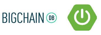 BigchainDB Java Spring boot
